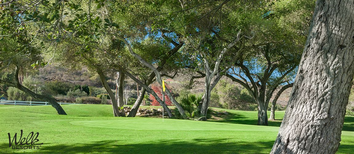 Golf Courses Escondido
